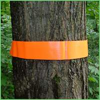 Penn's Woods Fluorescent Orange Safety Band