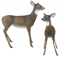 Flambeau Masters Series� Doe Whitetail Deer Decoy