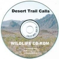 Desert Trail Calls Baby Mockingbird Distress Audio CD