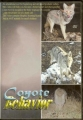 Jay Nistetter Coyote Behavior DVD